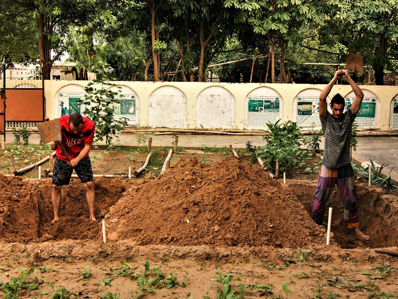 Permaculture beds in New Delhi!